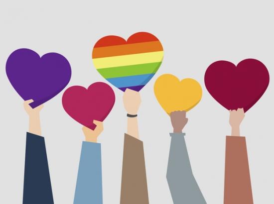 WEBINAR DIVERSIDADES: Una mirada amplia sobre orientación e identidades sexuales.